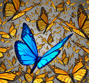 New vision standing out from the crowd business concept as a symbol of individuality and innovative thinking as a group of Monarch butterflies flying with a single special insect colored blue as an icon of creativity.